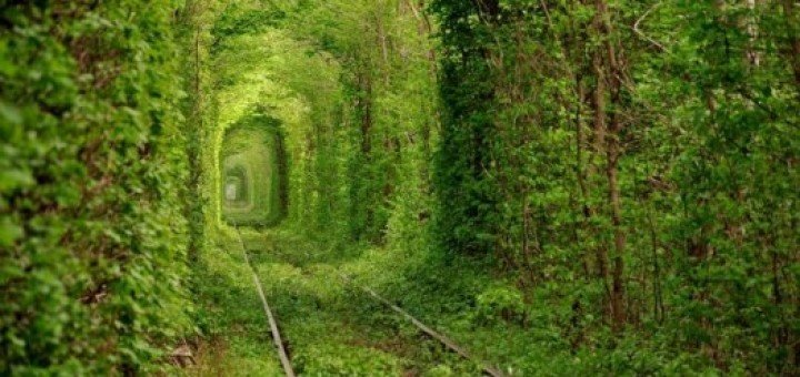 Tunnel-of-love-1-e14048359148021-720x340
