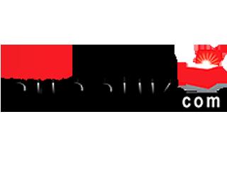 Logo61-sunduk