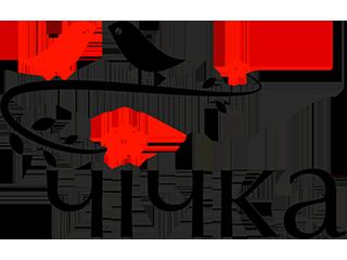 Chichka-logo1_