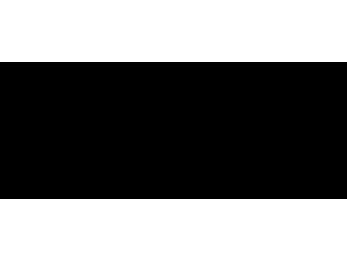Picasso-logo
