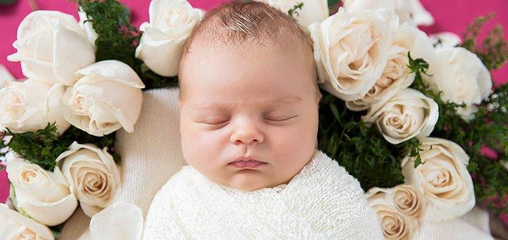 При заказе фотосессии беременности - аренда фотостудии в подарок в фотостудии «Baby box»