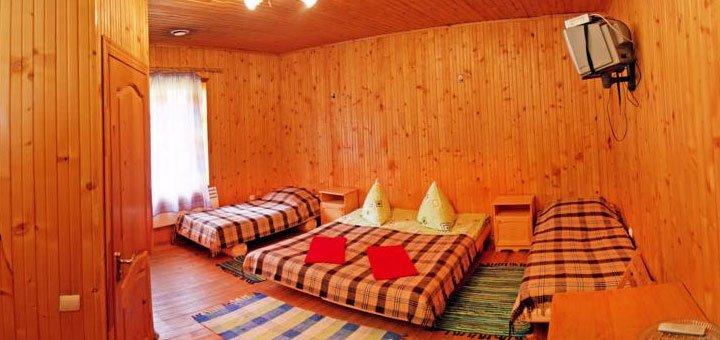 От 4 дней отдыха с питанием в отеле «Виват» в Орявчике