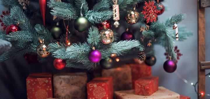 Студийная новогодняя фотосессия от фотостудии «Gevgary»