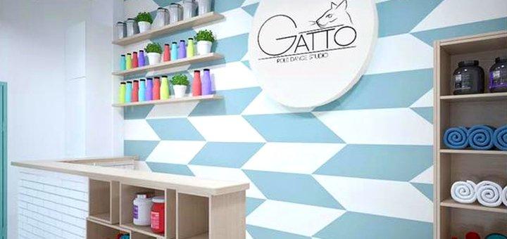 До 3 місяців занять Pole Dance в Studio Gatto