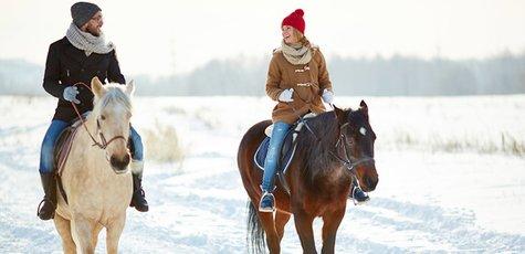 Pferdeschlittenfahrt-reiten-winter-hotel-zell-am-see-2-1170x780