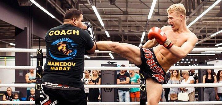 До 36 занятий по тайскому боксу или кикбоксингу в спортклубе «Арена»
