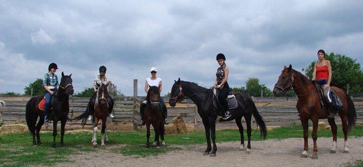 Скидка до 55% на прогулки на лошадях или занятия по верховой езде в семейном ранчо «Идиллия»