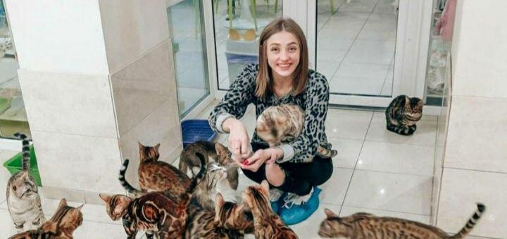 Скидка до 50% на посещение котейни, фотосъемку и мастер-класс «Шоколадный котик» от «Cat House»