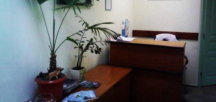 Скидка до 41% на установку керамических виниров в медицинском центре «Моя Клиника»